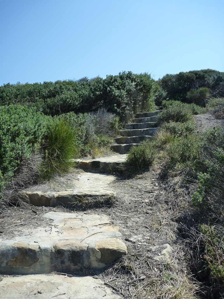 Stone steps near Henry Head (309848)