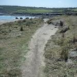 Track on Cape Banks in Botany Bay National Park