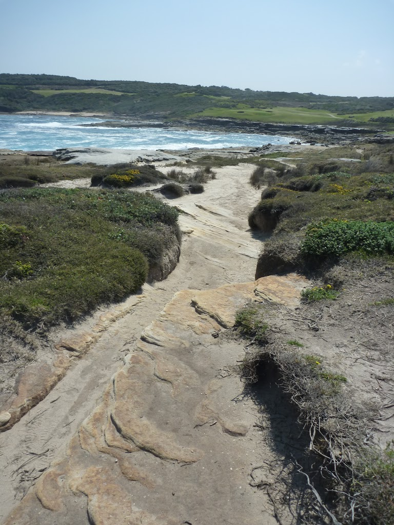Cape Banks rocky track (310175)