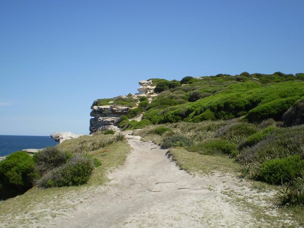 Coast Track (31018)