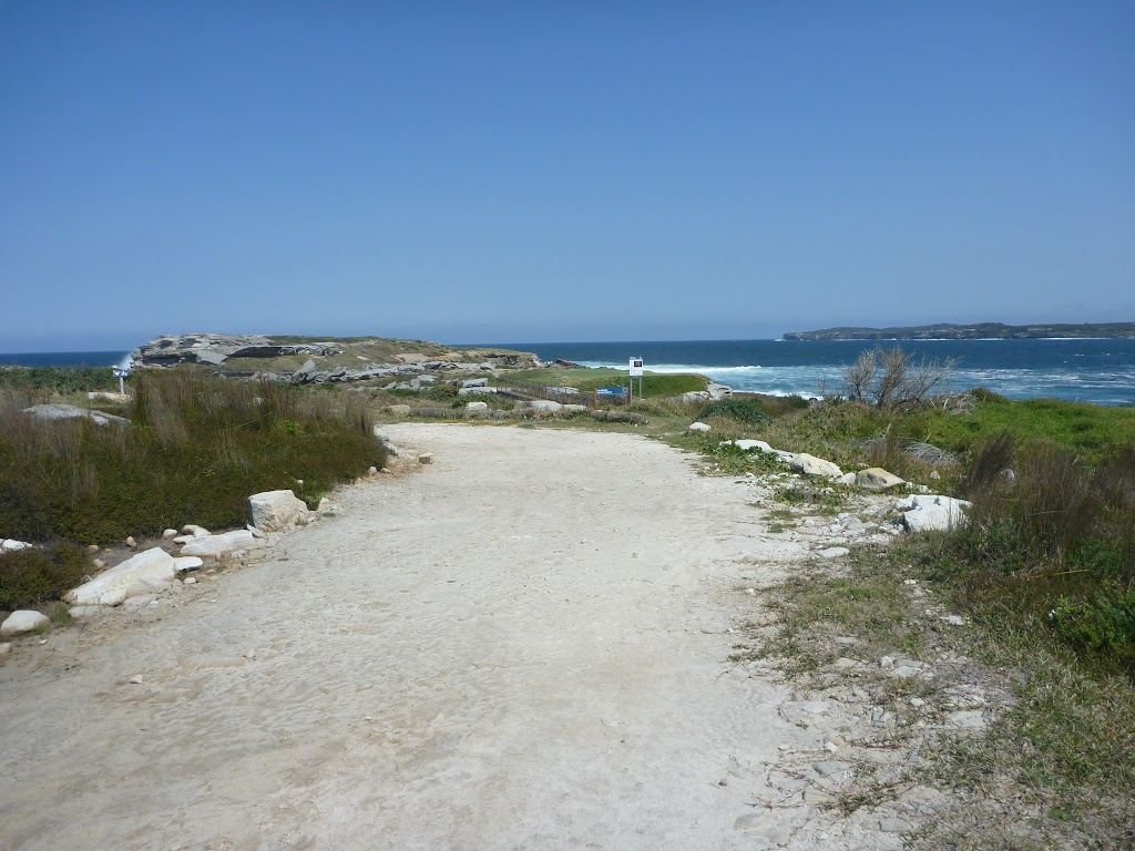 End of Cape Banks management trail in Botany Bay National Park (310229)