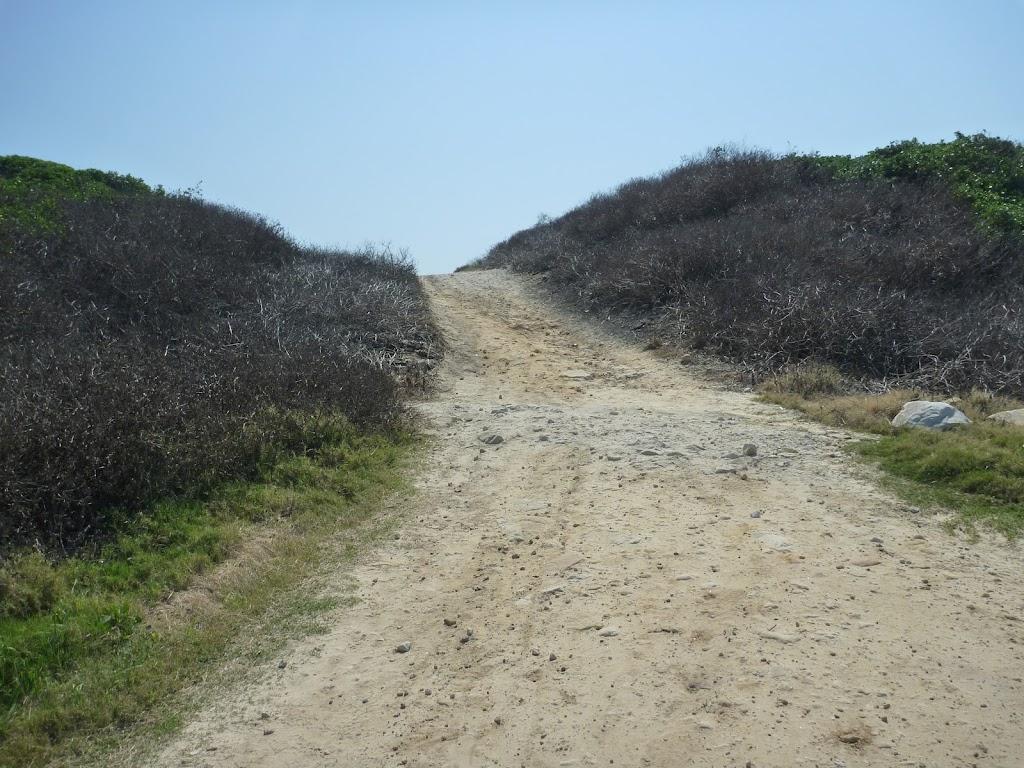 Cape Banks management trail, near La Perouse