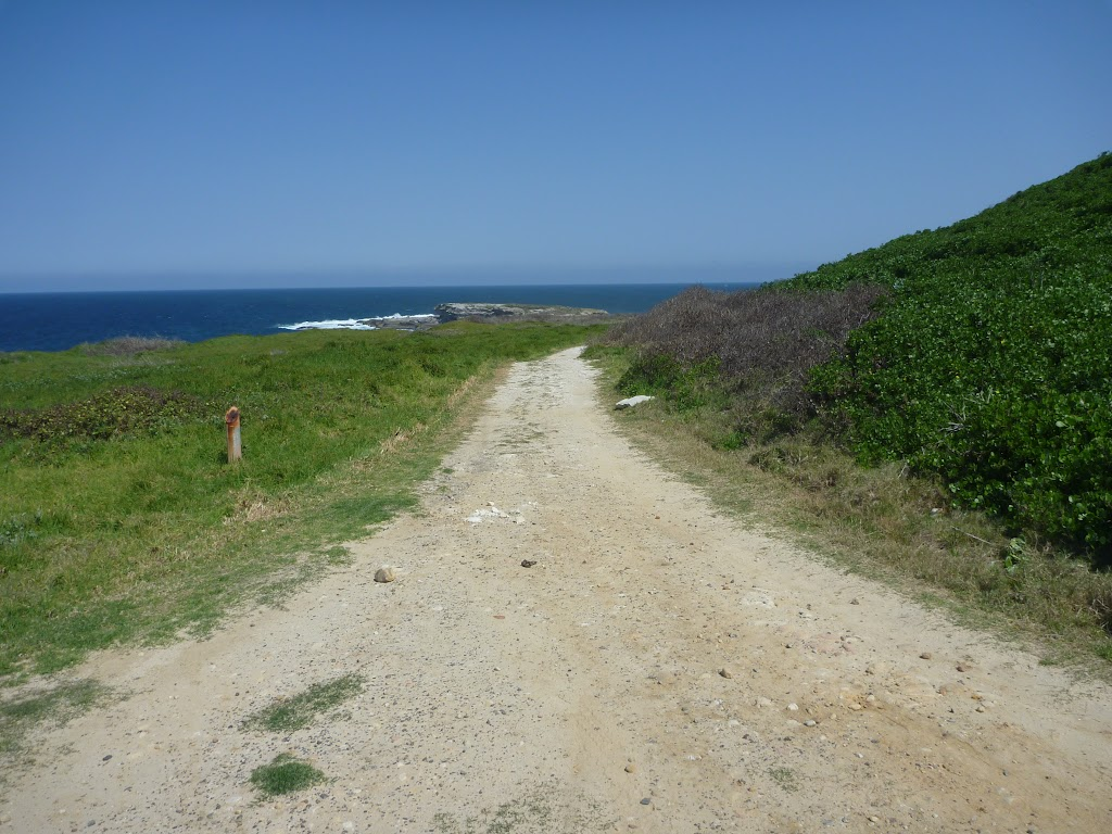 Cape Banks management trail towards Cape Banks (310286)