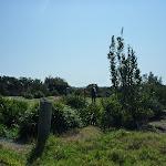 Golf Club close to the Coastal Cemetary Trail near Botany Bay National Park (310484)