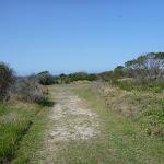 Coastal Cemetery Trail near Botany Bay National Park (310499)