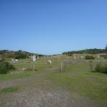 Coastal Cemetery near Botany Bay National Park (310514)