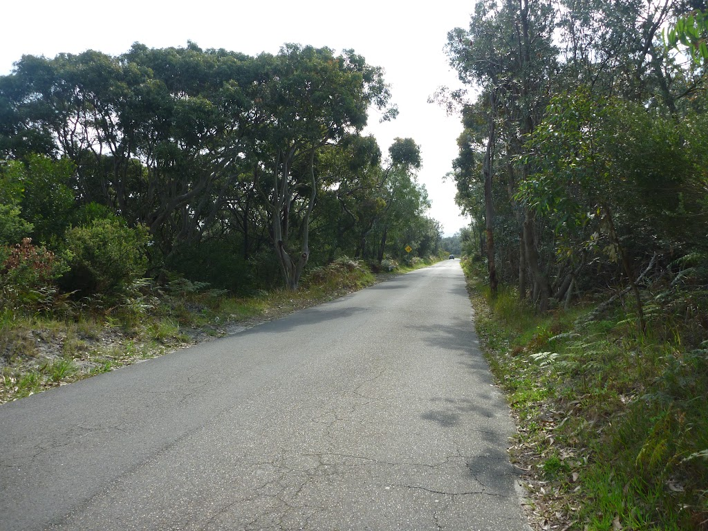 Henry Head Lane, near Botany Bay National Park