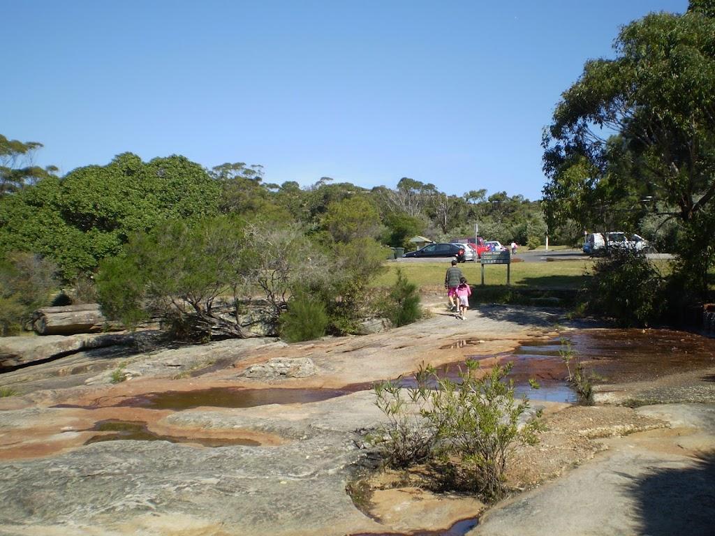 Wattamolla, path north of carpark