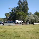 Wattamolla Picnic area