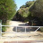 service trail from Wattamolla carpark (31114)
