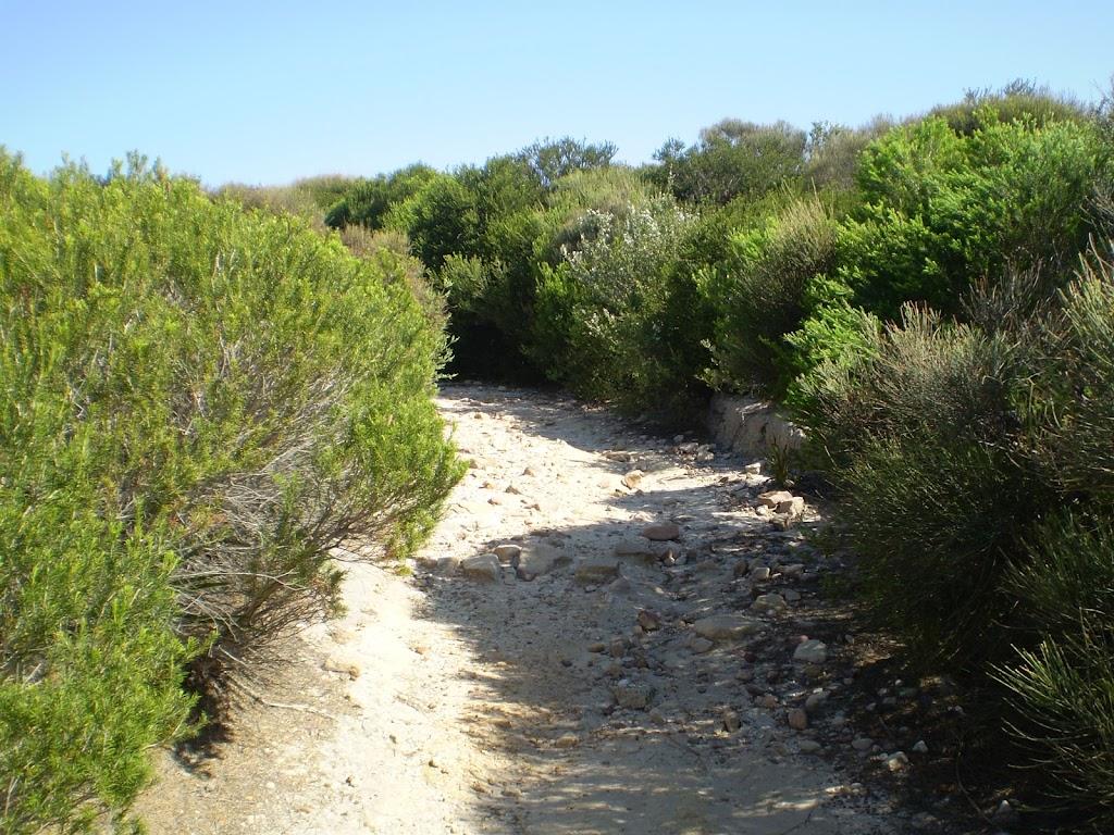 Coast Track