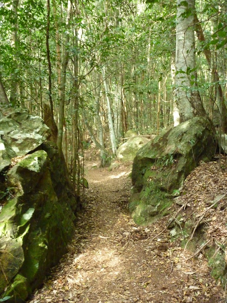 Federal Pass track passing between two boulders in the dense forest