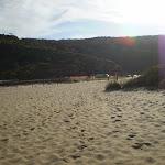 Garie Beach (31369)
