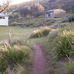 Garie Beach Depression Houses (31414)