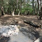 Corowal Plateau campsite (314315)