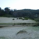 Creek on South Era Beach (31465)