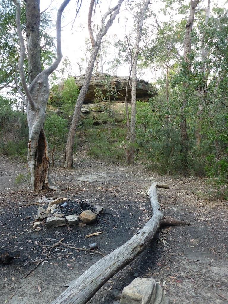 Singa-Jingawell Creek Campsite
