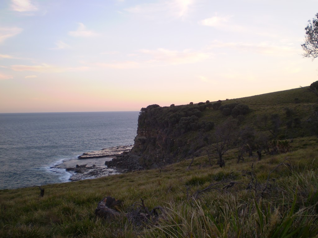 The view of the coast from the grasslands south of Burning Palms Beach (31540)