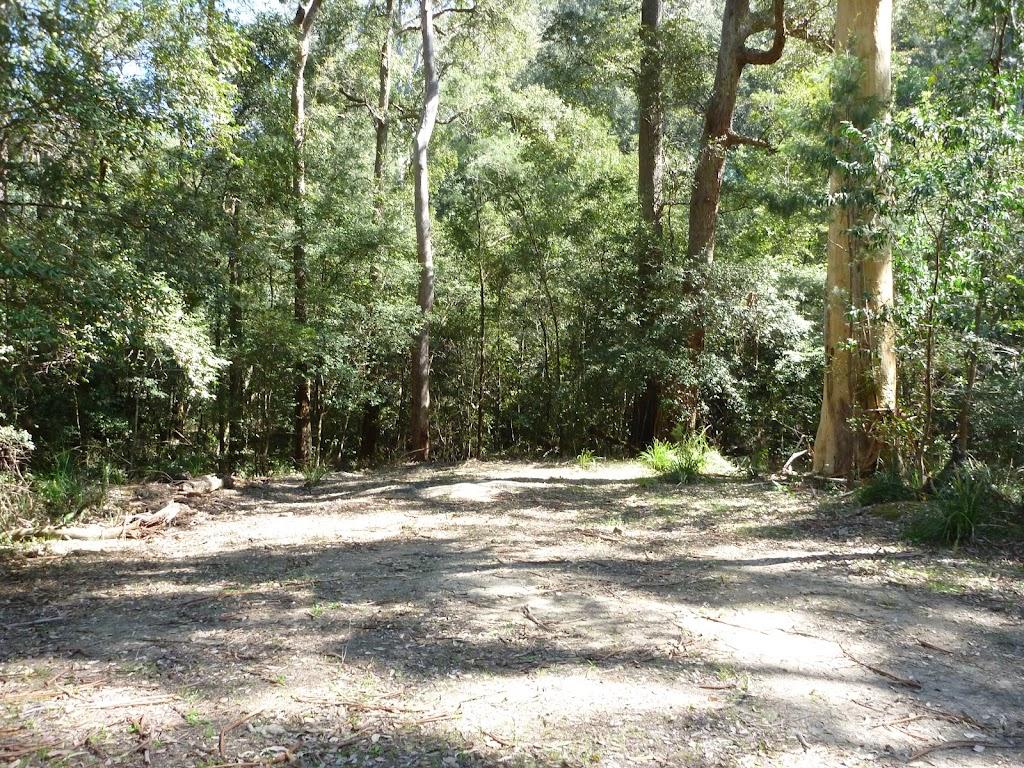 Leura Falls Creek informal campsite