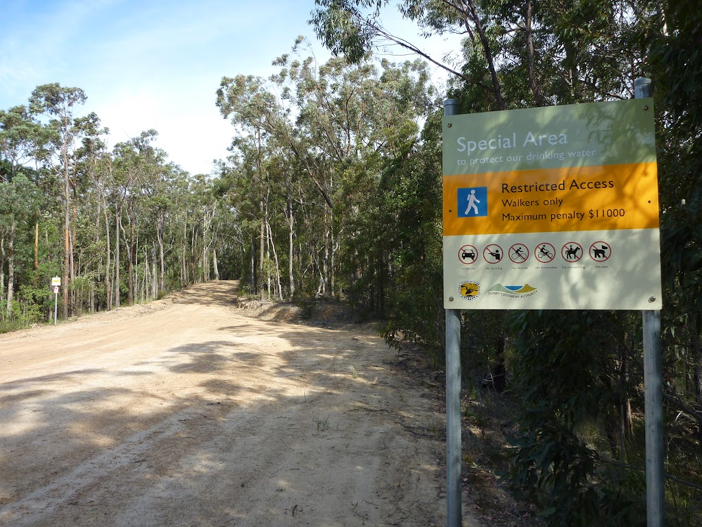 Large clearing and Special Area boundary on Sublime Point Trail west of Leura Falls Creek