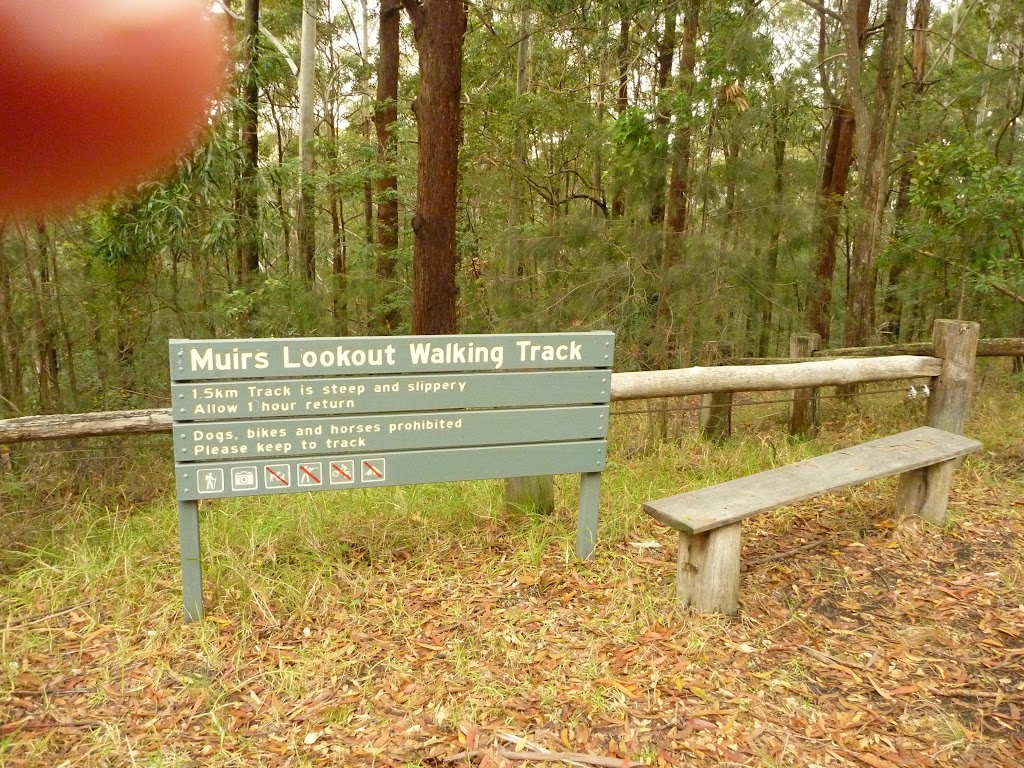 Muirs Lookout walking track sign near Cooranbong (320015)