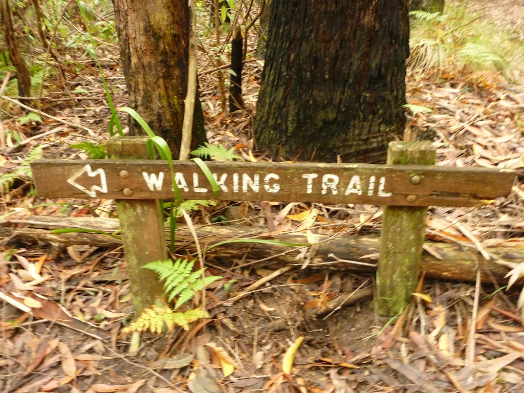 Walking trail sign near Muirs Lookout, Cooranbong