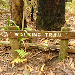 Walking trail sign near Muirs Lookout Cooranbong (320129)