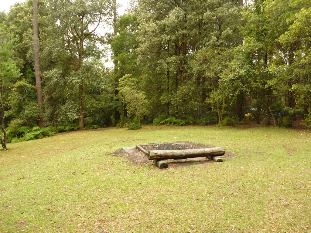 Picnic area at the Pines campsite in the Watagans (320579)