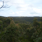 On the ridge between Karloo Pools and Uloola Falls (32058)