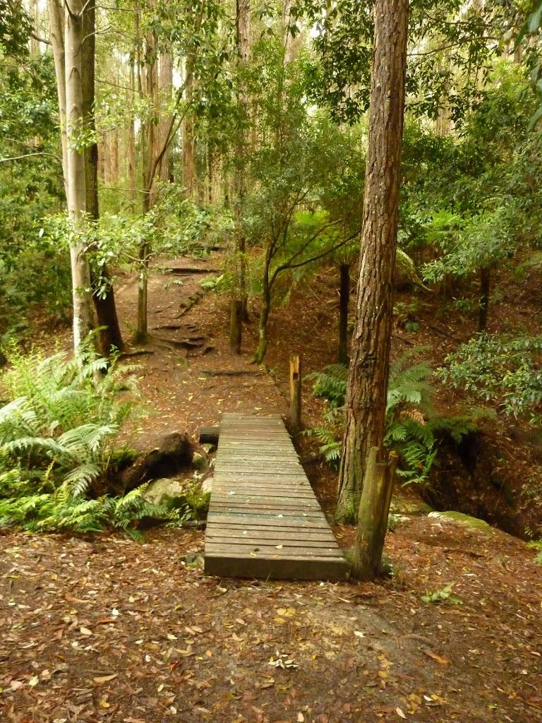 Timber footbridge over creek near Turpentine campsite in the Watagans