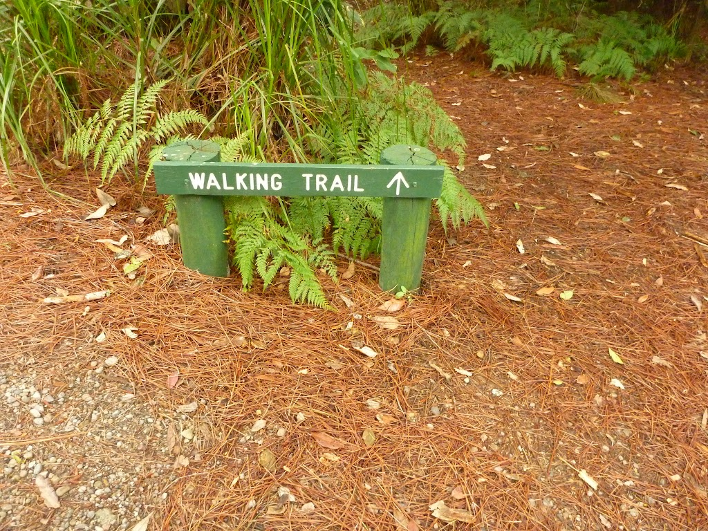 Walking track sign in Pines campground