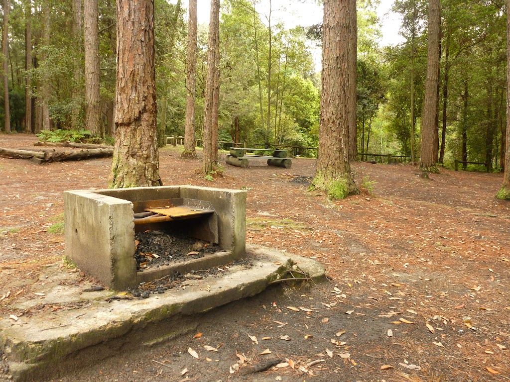 Fireplace in the pines camping ground in the Watagans