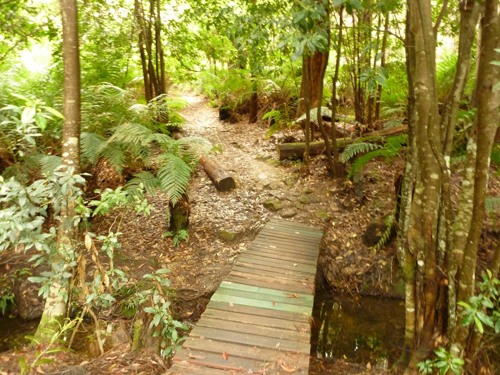 Timber bridge near Pines campsite in the Watagans