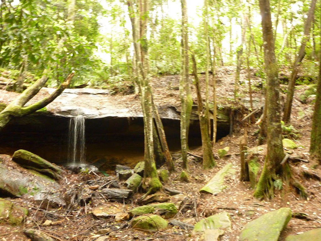 Small waterfall near the Pines campsite in the Watagans