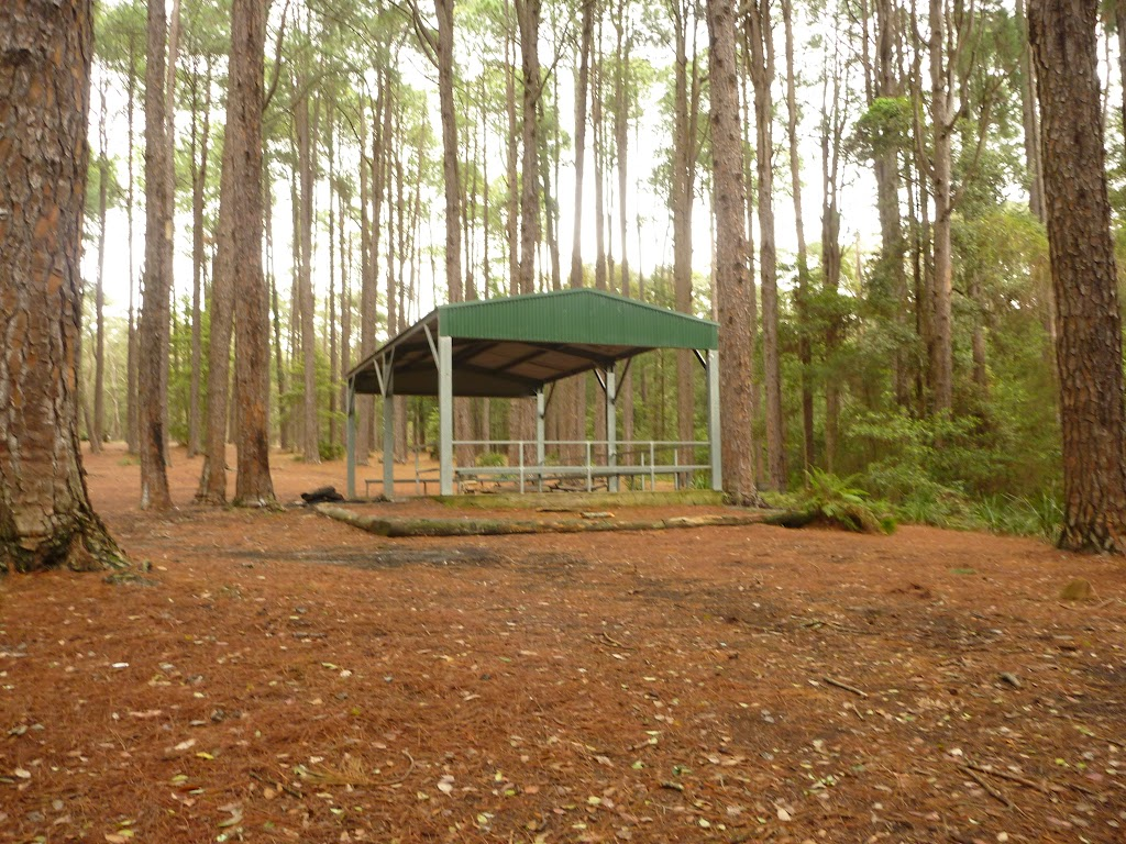 Metal shelter at the Pines Picnic Area in the Watagans