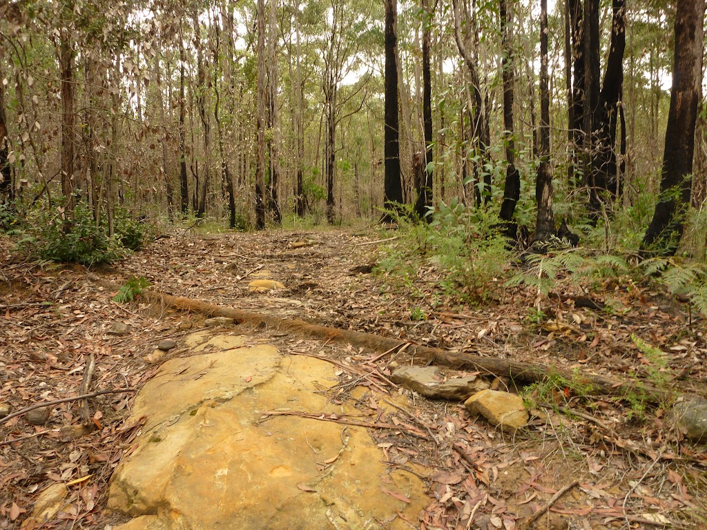 Rocky track in the Watagans