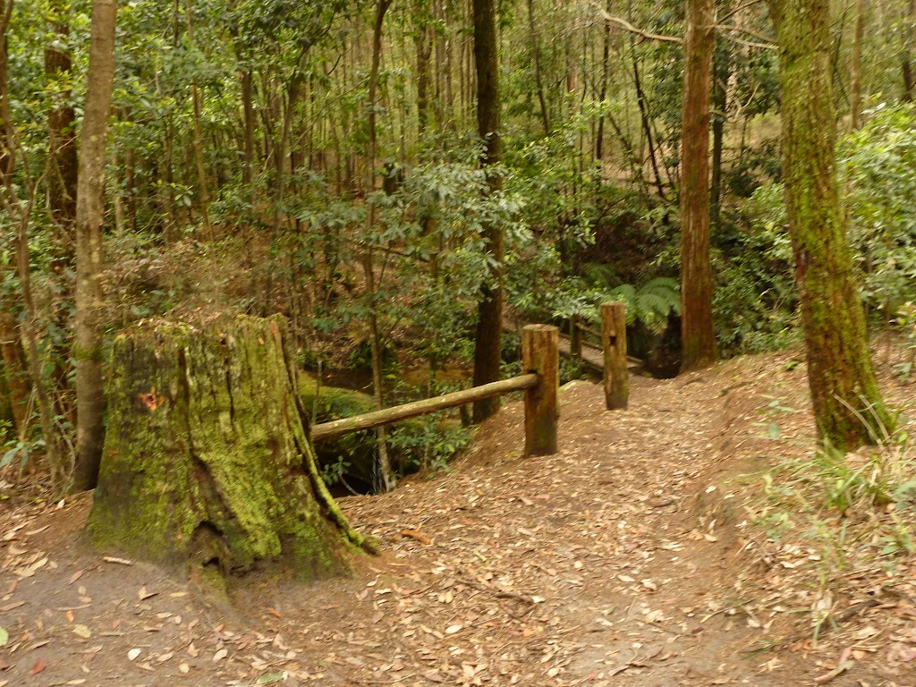 Timber post and railing near the dammed pool in the Watagans