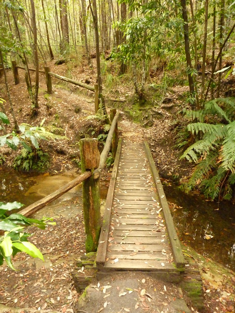 Timber bridge and railing near the Pines campsite in the Watagans