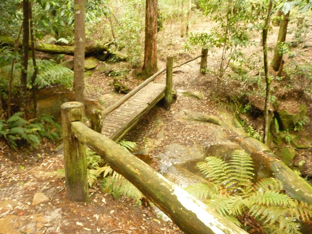 Timber footbridge and railing at the dammed pool in the Watagans