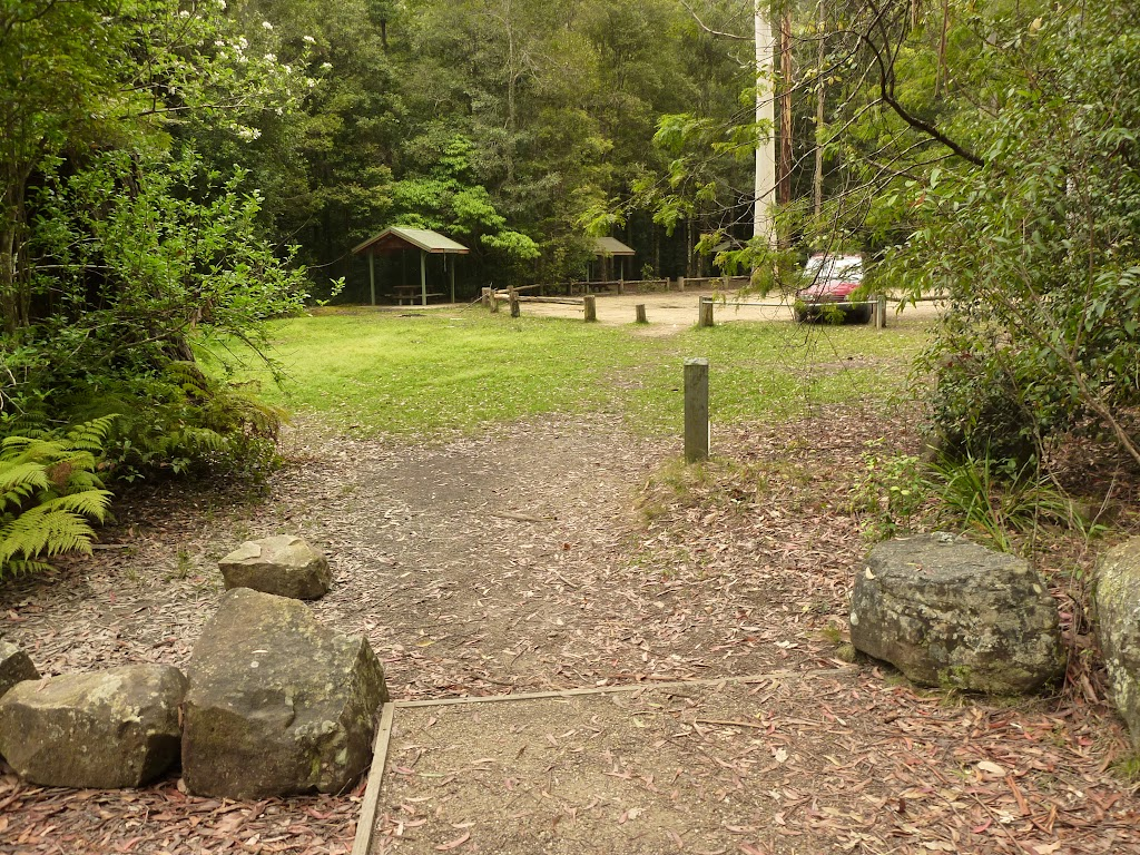 Looking at Boarding House Dam Picnic area near Watagans Forest road in the Watagans