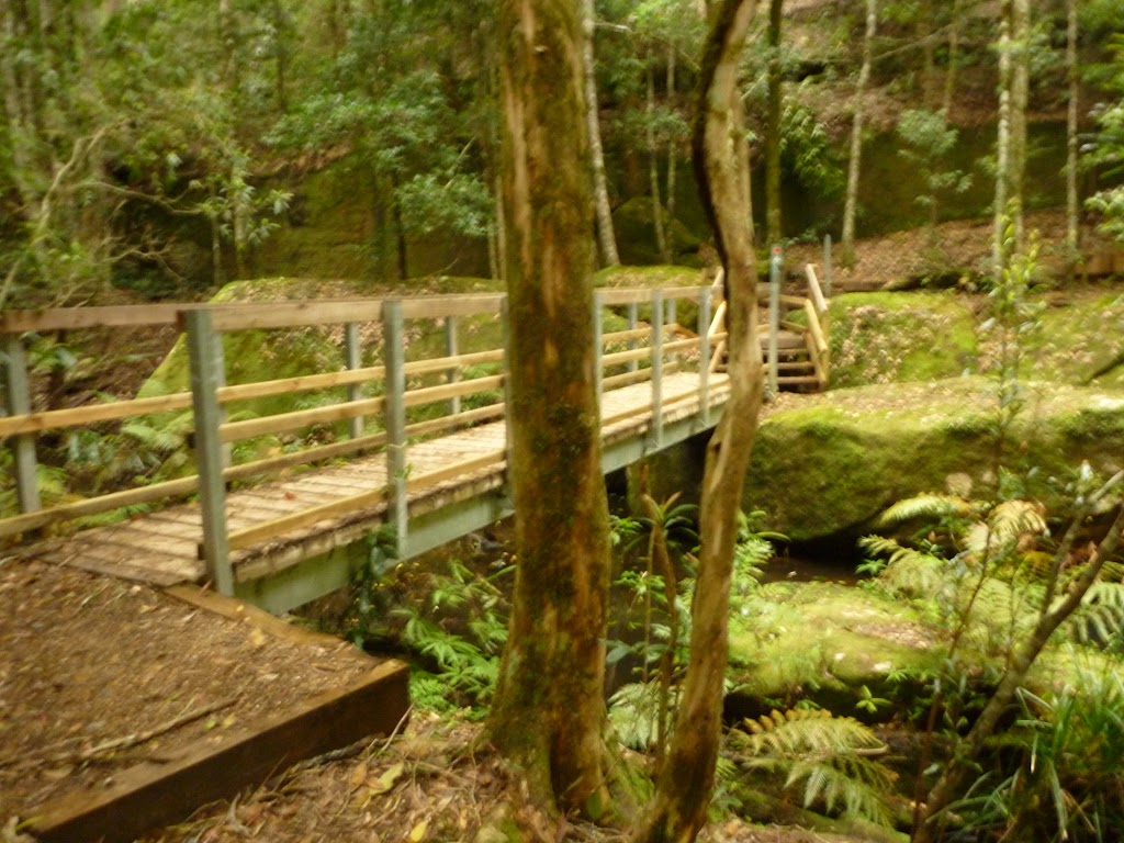 Timber bridge near the Moss Wall in the Watagans