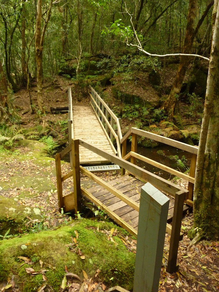 Timber bridge crossing creek near the moss wall in the Watagans (322697)