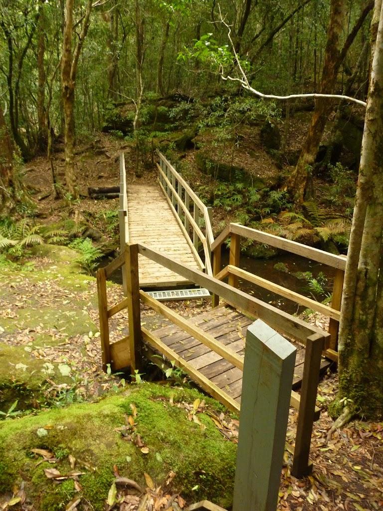 Timber bridge crossing creek near the moss wall in the Watagans