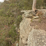 Rock cliffs at Gap Creek Viewpoint off Monkey Face road in the Watagans (322814)