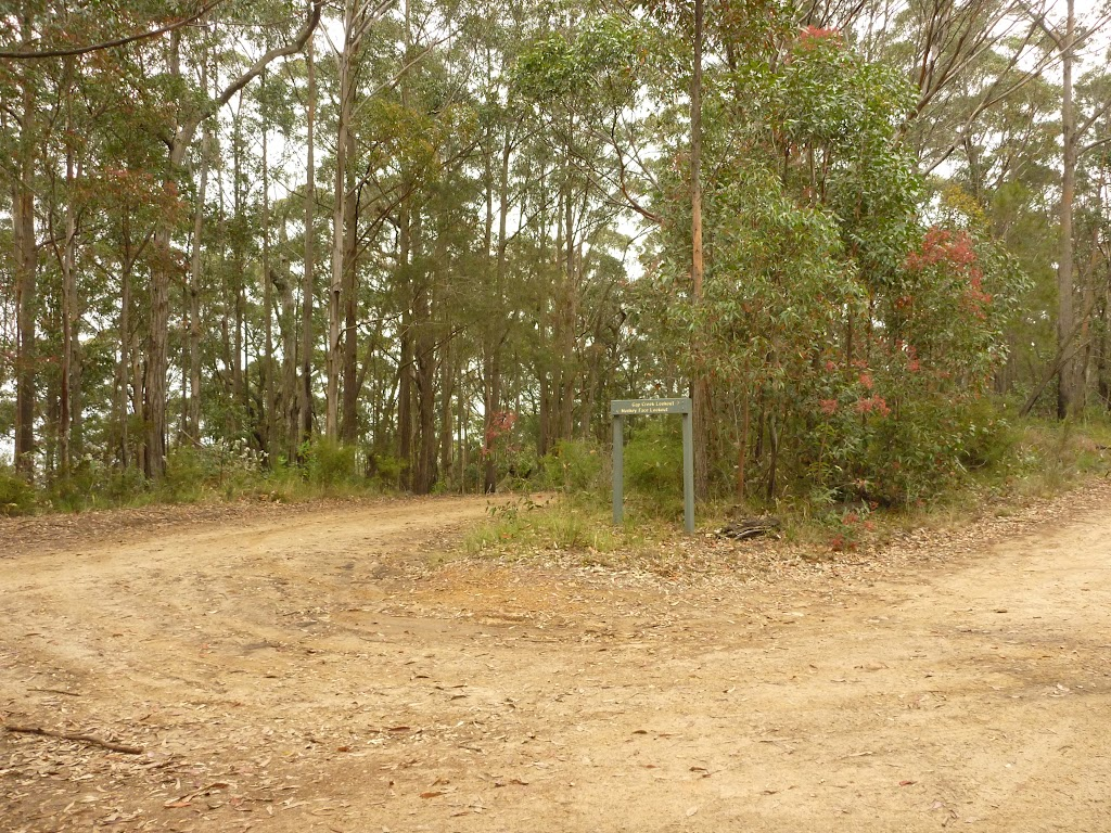 Intersection to Gap Creek viewpoint and Monkey Face viewpoint in the Watagans
