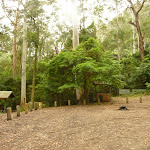 Gap Creek picnic area at the end of Bangalow Road in the Watagans