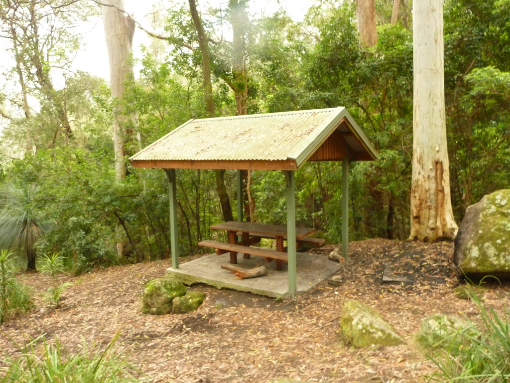 Picnic shelter at Gap Creek picnic area in the Watagans (323207)