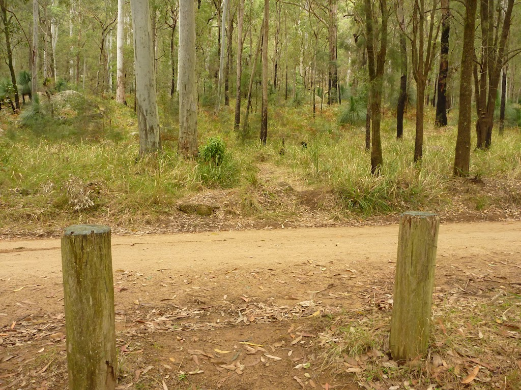 Timber post and track across Bangalow Road in the Watagans