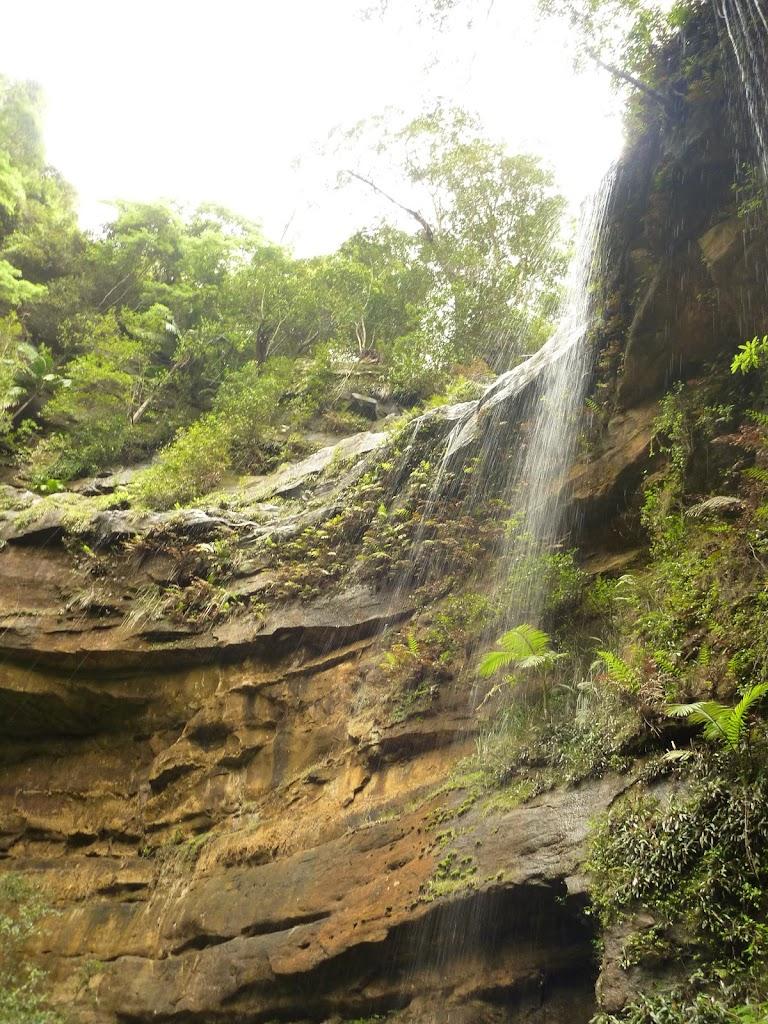 Gap Creek Falls in the Watagans