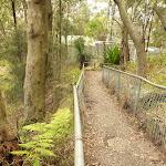 Fenced track near the Mt Sugarloaf summit (324161)